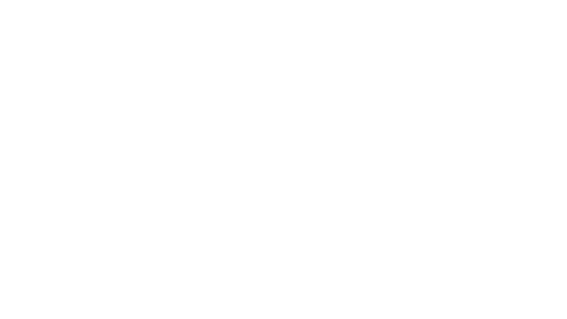 NeoFlow Group
